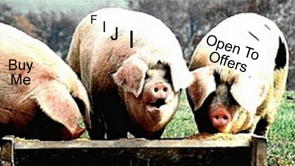 pigs in trough_edited-1