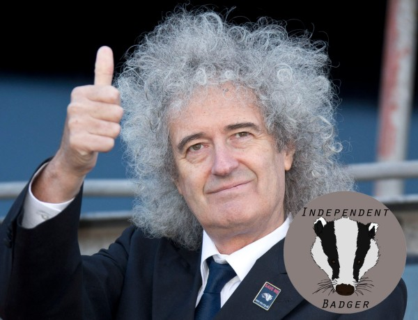 Britain Badger Battle