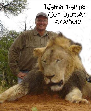 arse killing lion hole