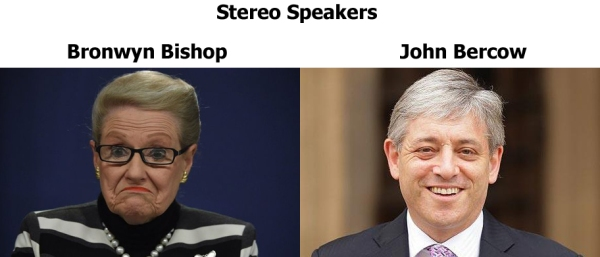 stereo speakers bishop bercow