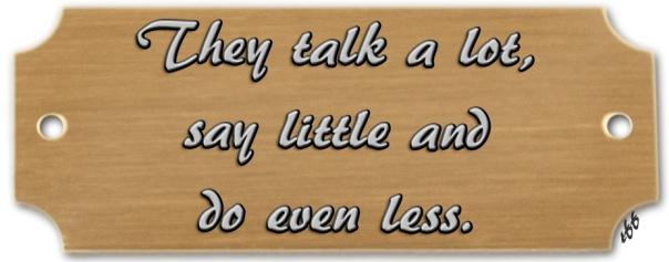 talk a lot say little